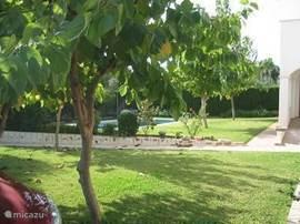 De tuin met carport. Regelmatig komt de tuinman langs om het gras te maaien. De bomen zorgen voor voldoende schaduw voor als je even niet in de zon wil liggen.