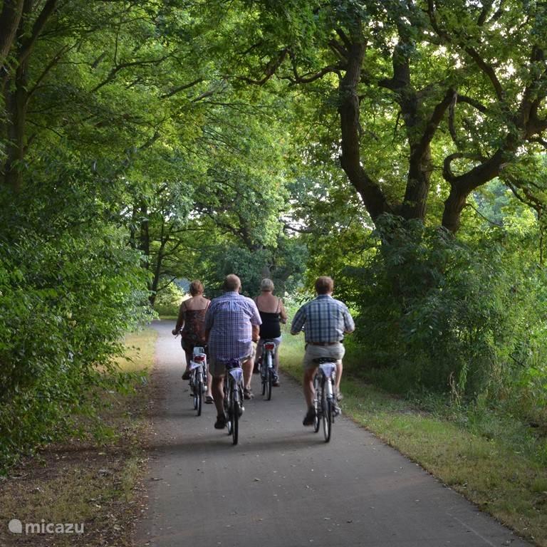 Is Drenthe voor de fiets gemaakt, of de fiets voor Drenthe? Drenthe is de fietsprovincie bij uitstek en heeft niet voor niets de titel 5-sterren fietsprovincie gekregen! Met de wind door je haren, in een prettig tempo en over mooie, veilige fietspaden kun je in Drenthe met volle teugen genieten van