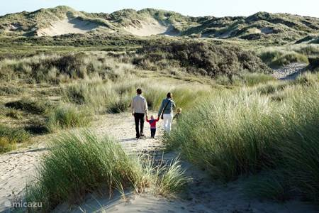 Tulp & Zee, rustig gelegen in het bruisende Noordwijk...