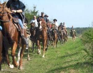 Rendeux 'paardrijden'