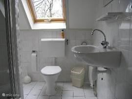 Badkamer boven,met douche,tweede toilet en wastafel.