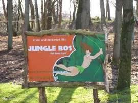 Het junglebos,waar jonge kinderen heerlijk kunnen spelen en klauteren.