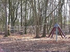 Nogmaals het junglebos,waar jonge kinderen heerlijk kunnen spelen en klauteren.