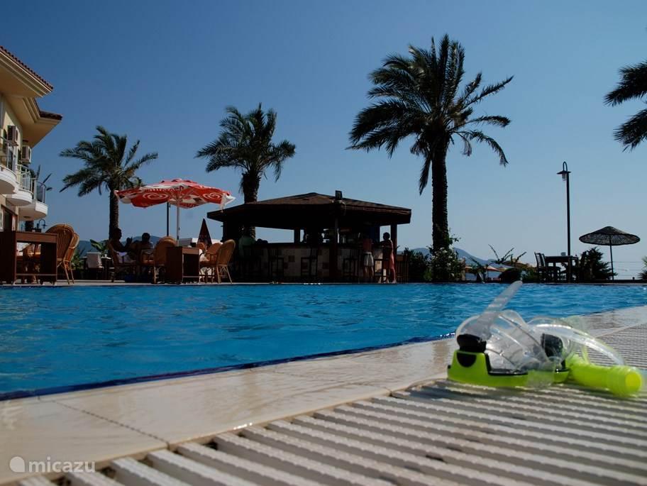 Fijn buitenzwembad voor volwassenen en kinderen