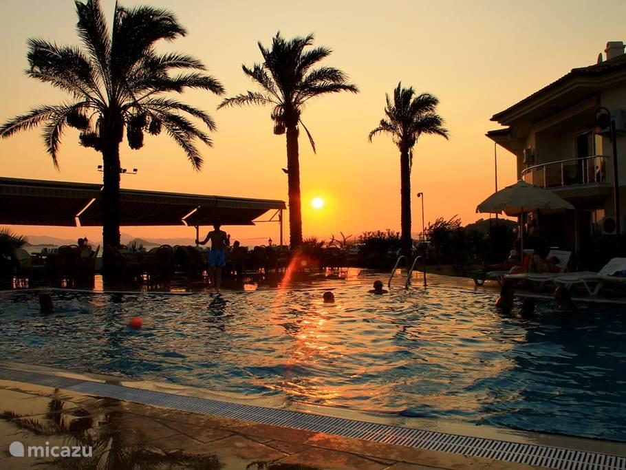 Zwemmen bij zonsondergang