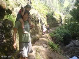 huis ligt aan de route van vele levada wandelingen. levada's zijn irrigatiekanalen die over het hele eiland lopen.