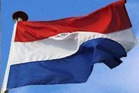Extra's: advies en tips in het Nederlands