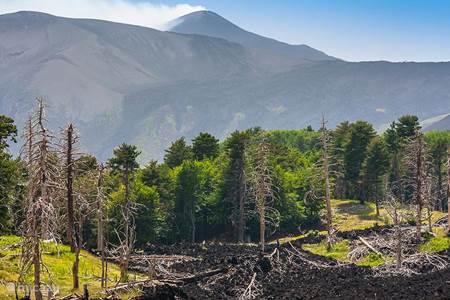 Activiteiten: Excursies naar de Etna
