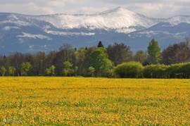 De berg Sneeuwkop in de lente