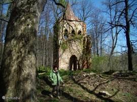 De romantische abdij ruïne in Bukowiec