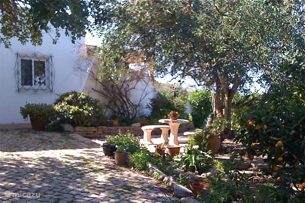 Vakantiehuis Portugal, Algarve, Faro Gorjoes Villa Casa Algarve