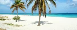 Beach op 7 min afstand