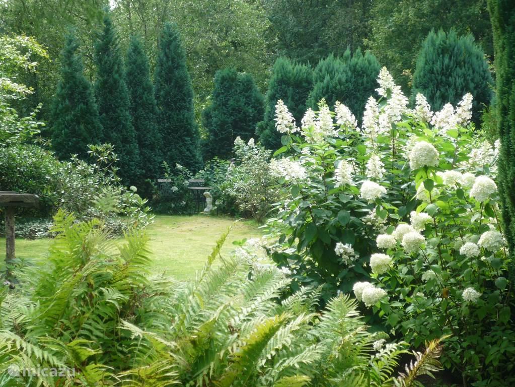 Weer de tuin