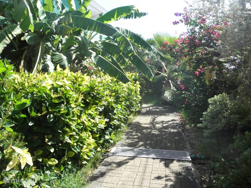 Verder wandelend door de tropische tuin.....