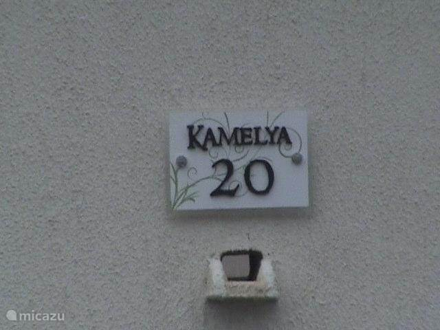 Kamelya 20