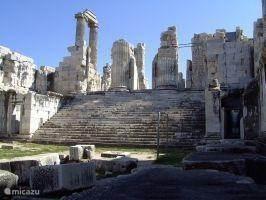 Didyma, Het Adyton (Secos)