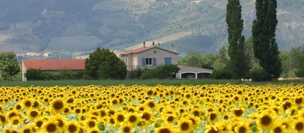 """In een schitterend gelegen huis in Provençaalse stijl, """"Le Mas de Saint Ferreol"""", op een terrein van 6500 m2 in één van de mooiste valleien van de Drôme in Zuid Frankrijk, tussen de Alpen en de Provence, vindt u deze comfortabele appartementen."""
