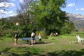 table tennis in the Northern garden