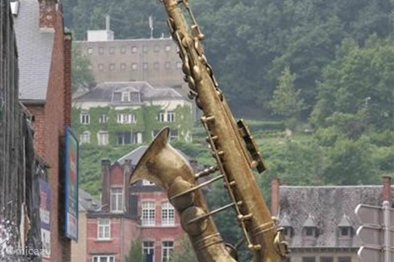 Ferienwohnung Belgien, Ardennen, Dinant Bungalow Tass Niere 10