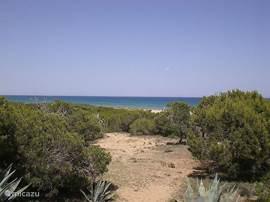 duinen van campomar