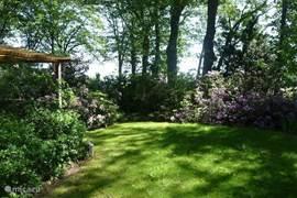 Tuin rondom de bungalow
