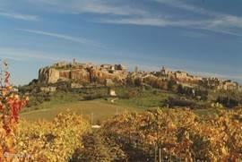 Orvieto -circa 40 km
