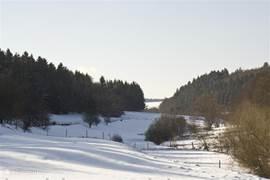 In de directe omgeving,vind u vele wandelpaden die ook in de winter goed te belopen zijn. Tevens zijn er vlakbij langlauf-loipes uitgezet. Skieen kunt u op de Nuerbergring, niet echt een heel groot gebied maar voor de beginner onder u, een uitgelezen locatie!