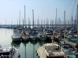 Haven Torrevieja op 10 min rijafstand