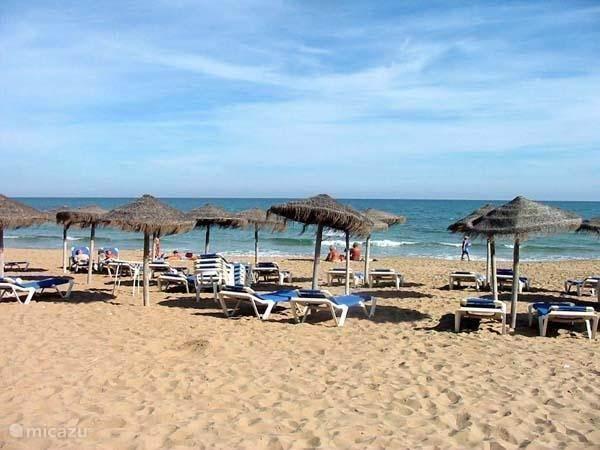 Vakantiehuis Spanje, Costa Blanca, Los Montesinos Geschakelde woning Casa de Vos - inclusief WIFI