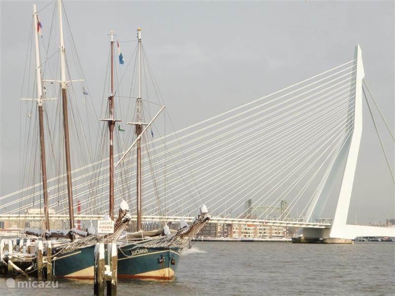 Vakantiehuis Nederland, Zuid-Holland, Rotterdam vakantiehuis Groepsaccomodatie Luciana