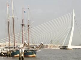 Ligplaats aan de Maas met de Erasmusbrug