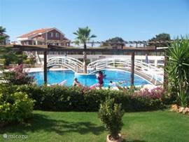 Ons romeinse zwembad, waar u uw baantjes in rondjes kunt trekken!