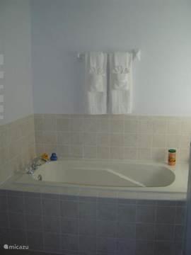 Badkamer 1 met ligbad en douche