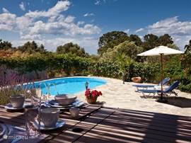 Ruim terras met uitzicht op het zwembad, omringd door olijfbomen en uitzicht op zee!