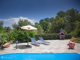 Heerlijk zwembad met ligstoelen, omringd door bloemen en een groene heg.