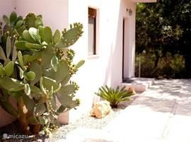 Dit is aan de voorkant van het huis bij de voordeur. Zo komt u aan in een oase van rust en schoonheid!