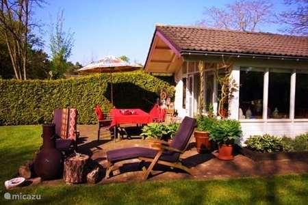 Vakantiehuis Nederland, Overijssel, Holten vakantiehuis De Bonte Specht(met sauna)Overijssel