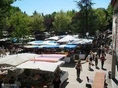 Antiques brocantemarkt Barjac