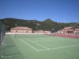 tennisbanen gelegen op het park