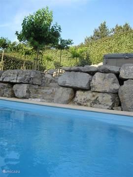 groot  zwembad in de achtertuin met uitzicht op hoger gelegen terras met moerbei bomen.