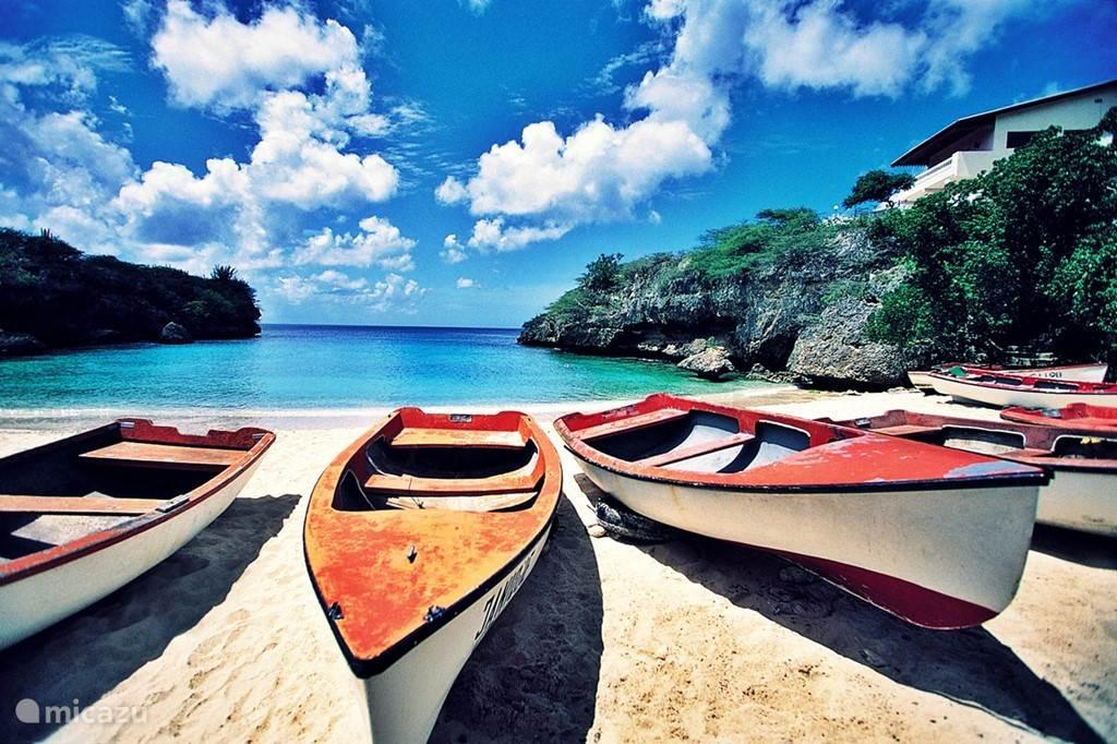 Het strand van Lagun
