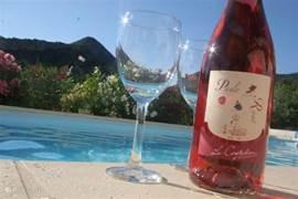 voor wijnliefhebbers, een glaasje uit de gekende wijnstreek. Laat je meevoeren op de Route touristique des Côtes du Rhône.