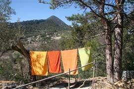 linnen lekker wapperen in de zon, wasmachine, strijkijzer aanwezig