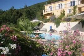 mooie oleanders,heerlijkruikende lavendel, een frisse duik in het zwembad ...