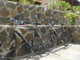 Twee mountainbikes voor de sportievelingen of als je naar het dorp wil om b.v. vers stoktrood te halen!
