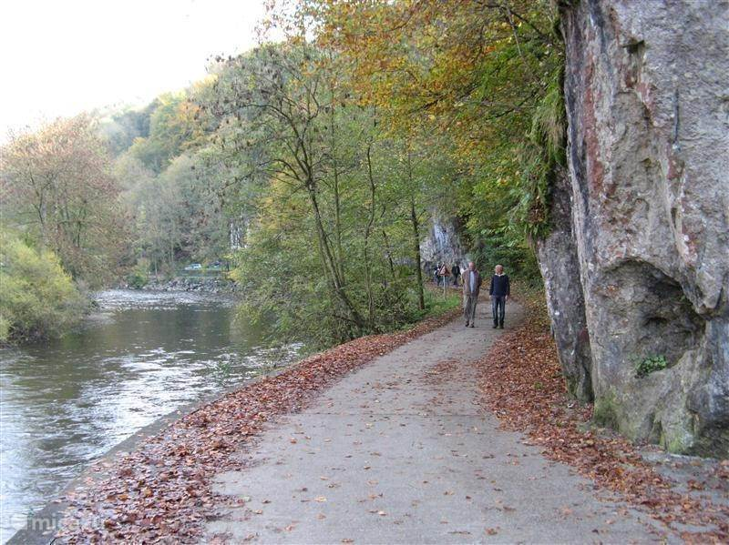 Walking along the Ourthe