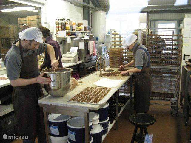 Visit to the chocolate factory