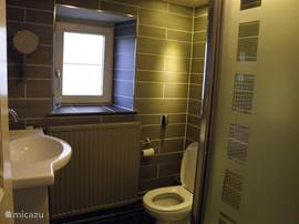 Bathroom with massage shower and toilet
