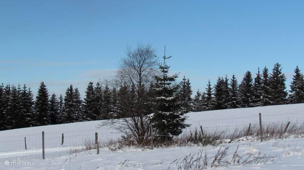 Wettervorhersage für Winterberg und Umgebung