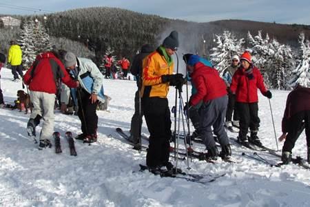 Skien in Neusastenberg